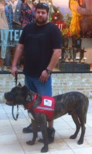 Disabled veteran asks for public support; service dog faces euthanasia for biting woman who beat him with metal pole - Sign the petition
