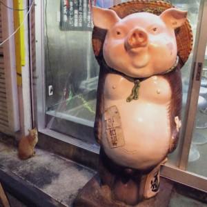 Giappone - Semplici Conoscenti