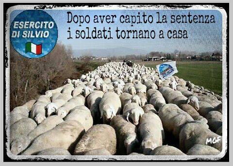 esercito di silvio pecore
