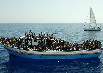 Alla ricerca di asilo