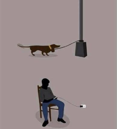 11 cane legato uomo legato smartphone