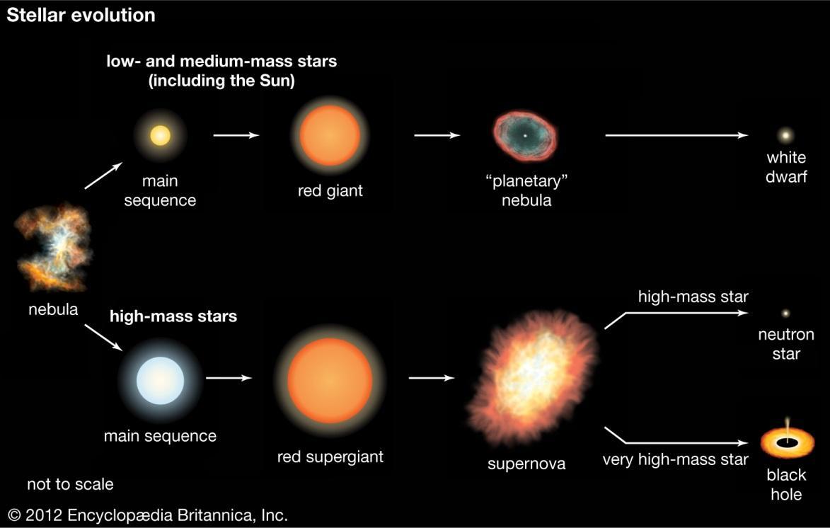 Evoluzione di una stella a seconda della sua massa