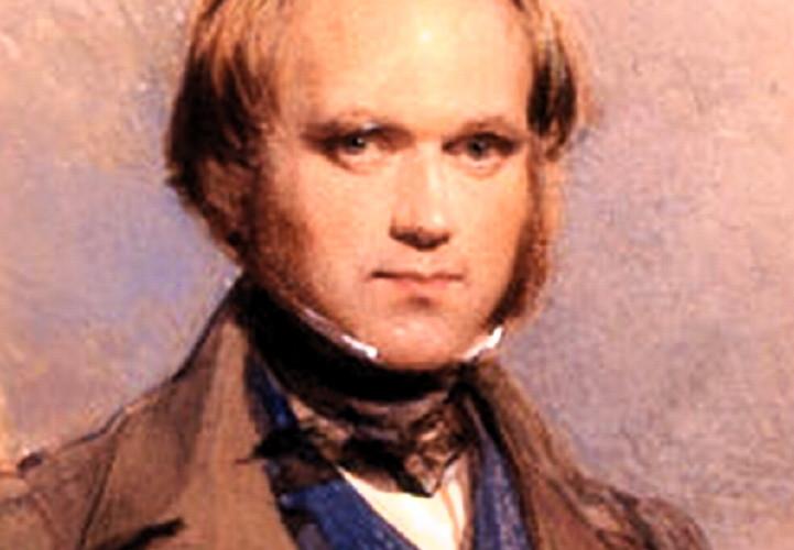 Darwin-young