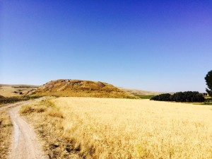 La collina di Çadır Höyük nell'Anatolia centrale.