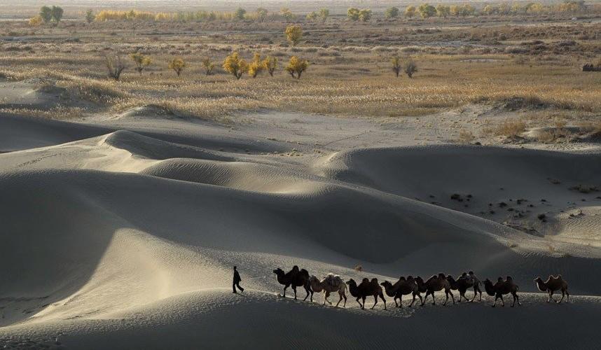 deserto del Taklamakan