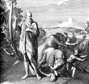 Le due orse bibliche che danno il titolo (originale) al romanzo