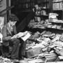 biblioteca bombardata