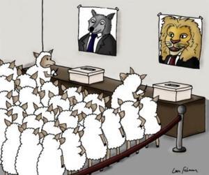 Democrazia in azione.