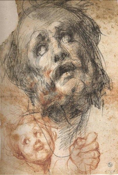 Pontormo: Studio di volto