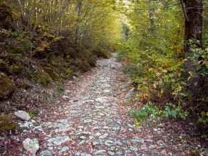Tratto della via Francigena in Toscana