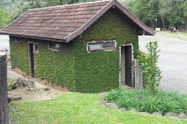 La casa verde immersa nel parco di Picada Cafè