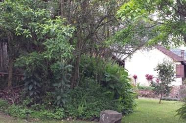 Le prime immagini viste superato il pinte di legno, nel parco di Picada Cafè