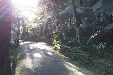 Brevi sentieri seguiti dal sole, nell'Aldeia Historia di Nova Petropolis
