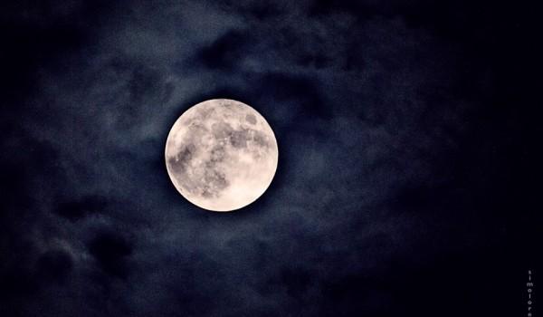 luna , simona loreti