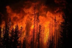 L'incendio in Alberta.