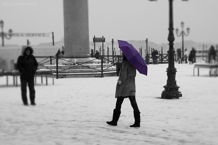 59555-ragazza-ombrello-viola