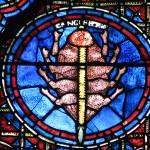 Vetrata della cattedrale di Chartres