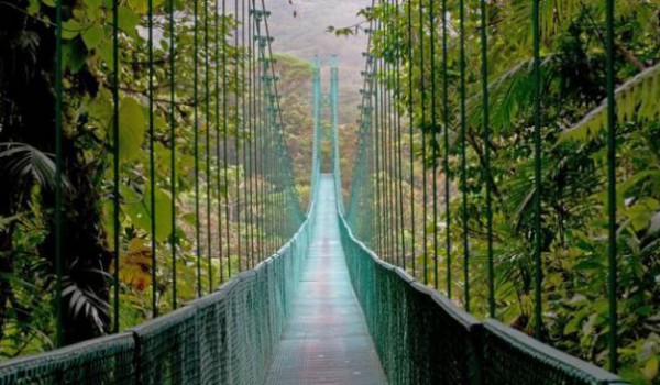 ponte copertiba 7