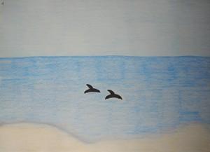 Dolphins at Playa Bonita