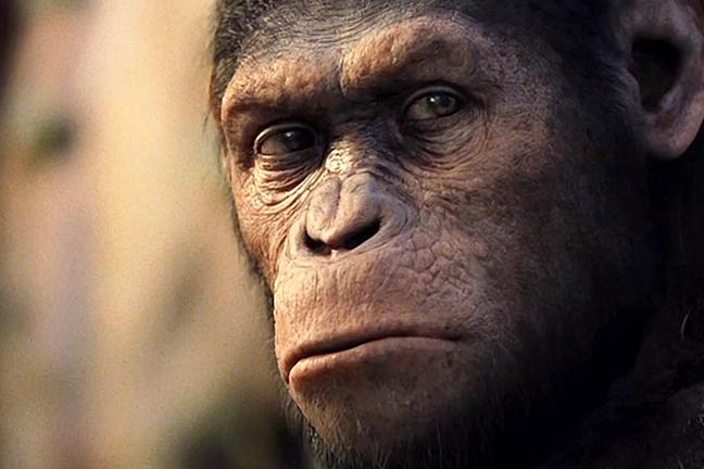 rise-planet-apes