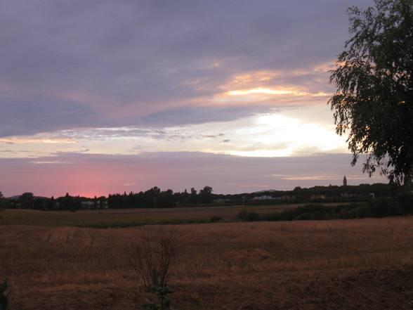 Incantevole paesaggio rurale nei pressi di Albinia-Orbetello, uno dei luoghi più pesantemente insidiati dal tracciato autostradale.