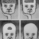 ignoranza e beatitudine