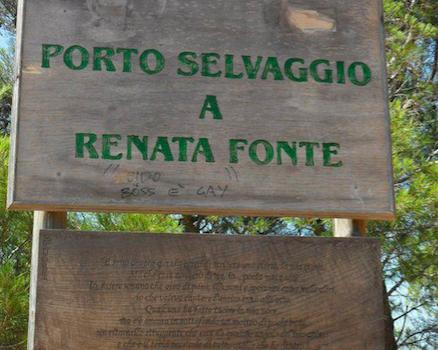 RENATA FONTE