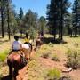 A cavallo nel West