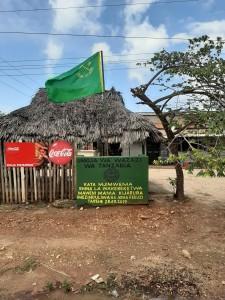 Il Partito della Rivoluzione (CCM), fondato da Julius Nyerere, governa la Tanzania dal 1961. Questa una sezione.