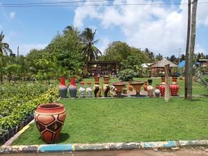 I colori della Tanzania. Frequenti i vivai e i vasi colorati come questi.