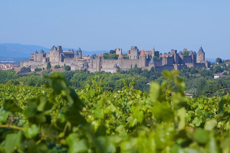 vigneti intorno a Carcassonne