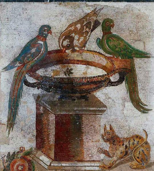 Mosaico romano con gatto e pappagalli