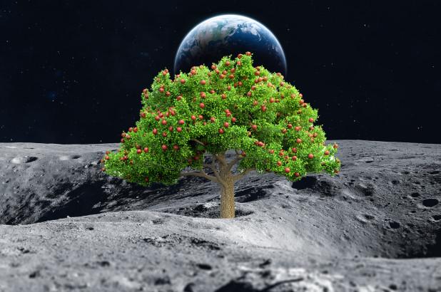 agricoltura_luna_marte-1