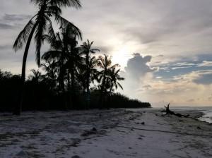 Isola di Mafia (Tanzania). Dicembre 2018.